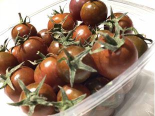 تصویر گوجه گیلاسی ارگانیک