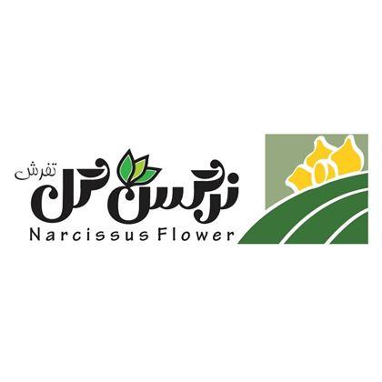 تصویر برای تولید کننده شرکت نرگس گل تفرش