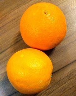 پرتقال تامسون ارگانیک