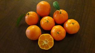 نارنگی ارگانیک